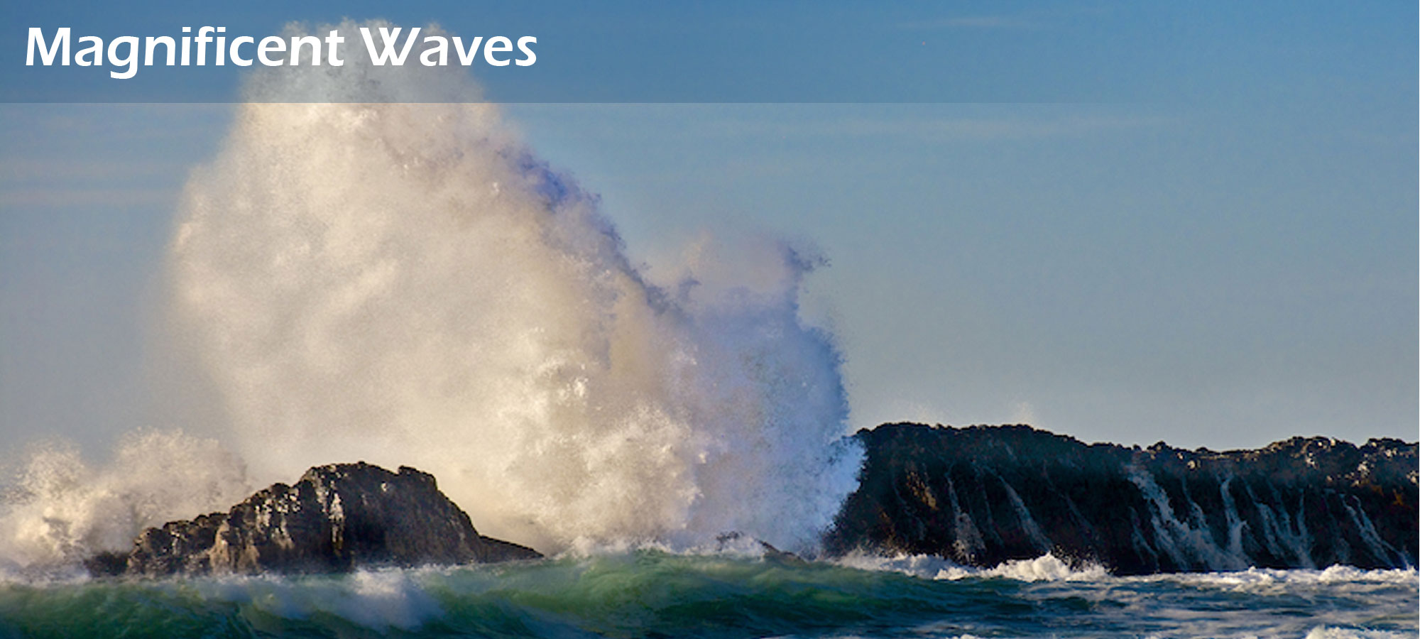 Magnificent Waves on Seal Rock Beach